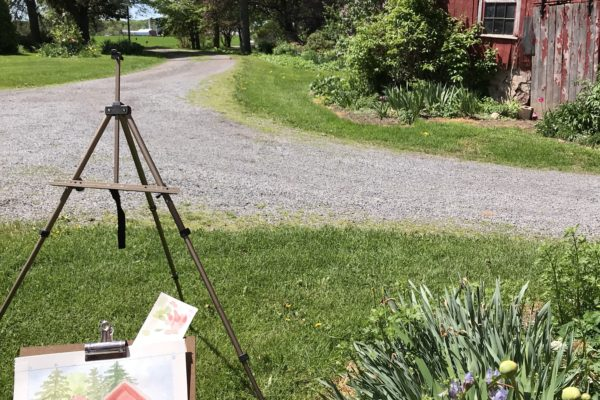Plein Air Painting at the Iris Country Gardens